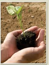 Plant the seed with giving and watch your loves ones grow.
